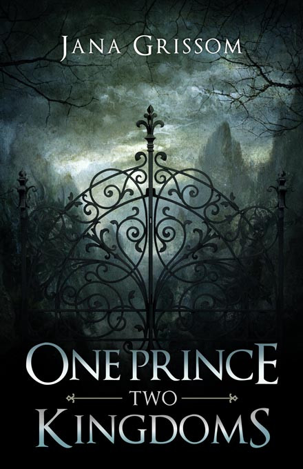 One Prince, Two Kingdoms ARC - Jana Grissom